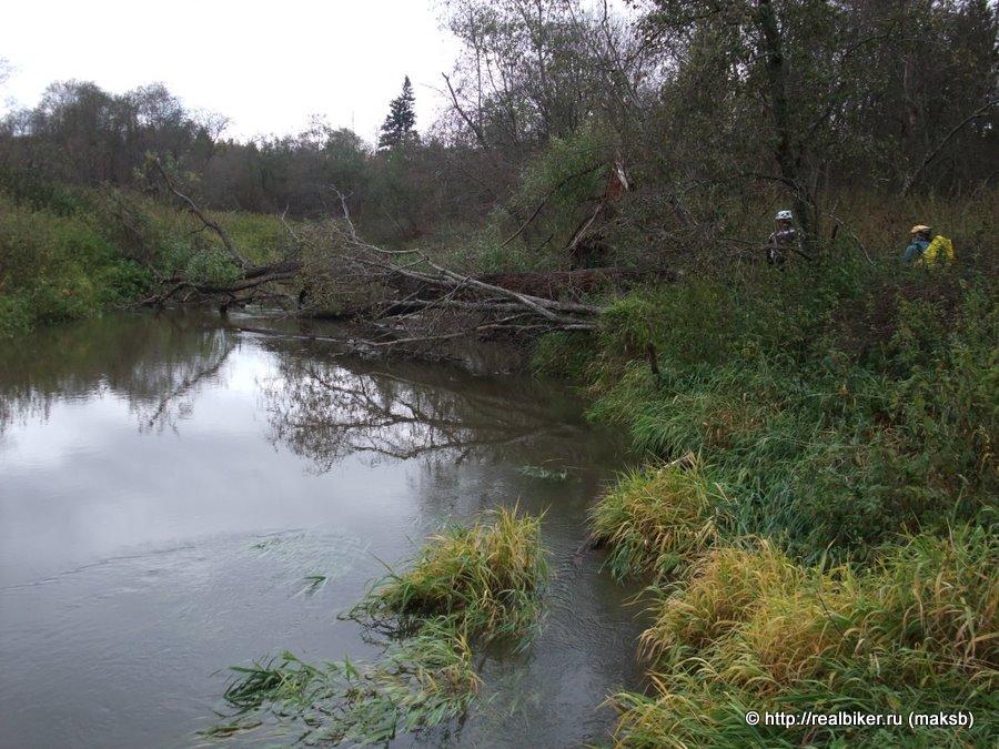 река руть рыбалка